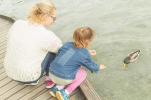Mother and daughter feeding ducks on a lake after speaking with a clinton township divorce lawyer